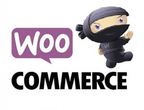 Envío gratuito WooCommerce – Ocultar resto de opciones